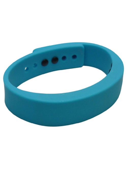 iSport2 Smart Band